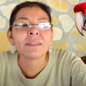 Ambientalista mexicana defensora de la guacamaya roja es asesinada en Chiapas