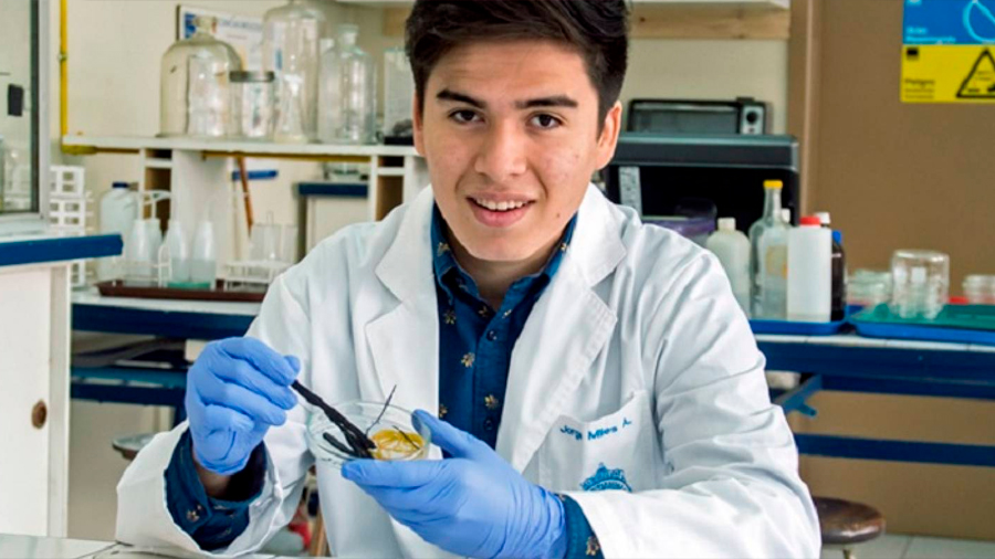 Científico chileno descubre bacteria que puede comer neumáticos