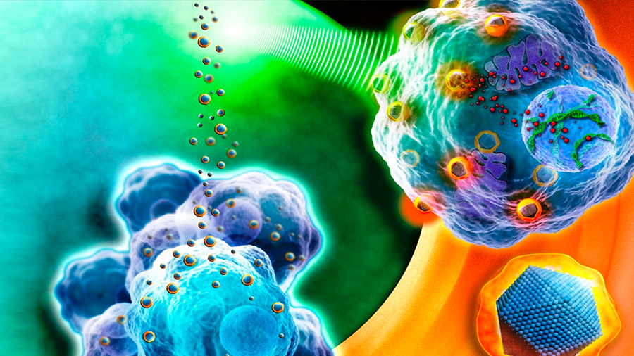 Investigadores argentinos desarrollan nanopartículas que logran matar células cancerígenas