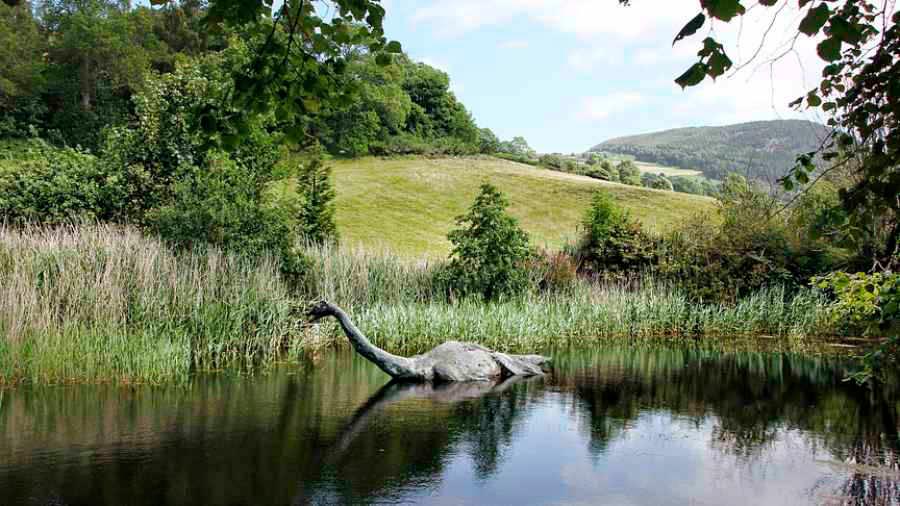 Descubren qué animal podría haber sido ser el monstruo del Lago Ness