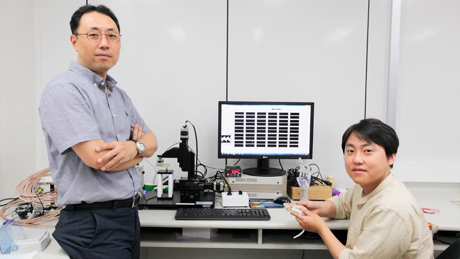 Crean una piel electrónica que puede sentir el dolor humano
