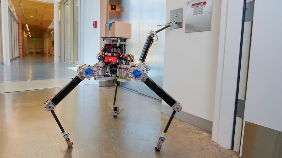 Este delicado robot puede pasar de cuatro a dos patas sin caerse