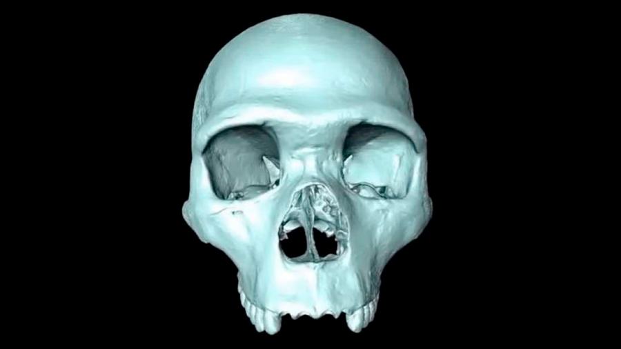 Científicos recrean cráneo del ancestro del Homo Sapiens en reconstrucción 3D virtual