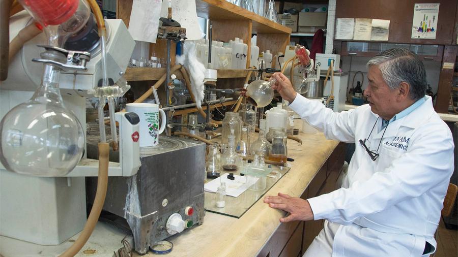 Logran en la UNAM compuestos que reducen tamaño de tumores cancerosos hasta en 80 por ciento