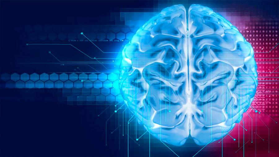 Los tumores cerebrales se integran en el 'cableado' del cerebro