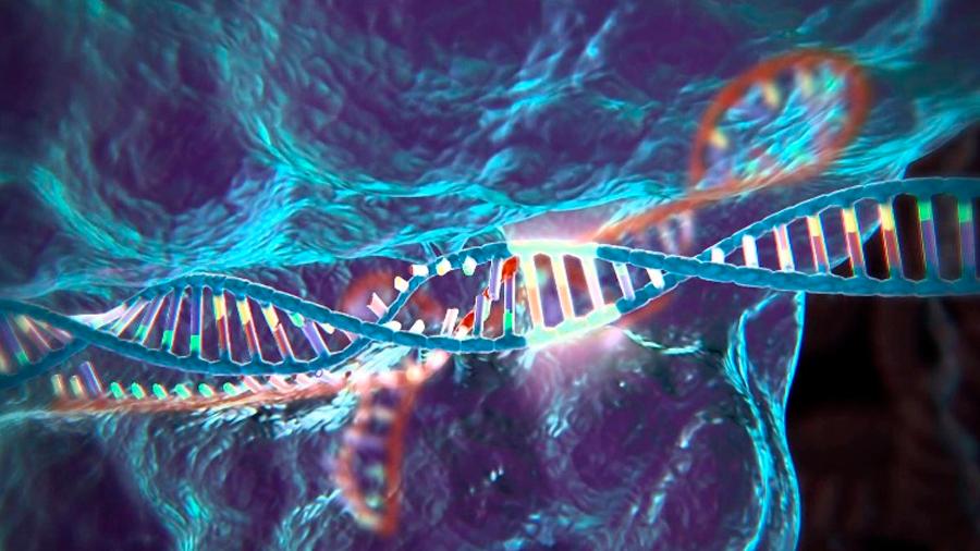 Prevén riesgo de que CRISPR solo cure las enfermedades de la gente rica