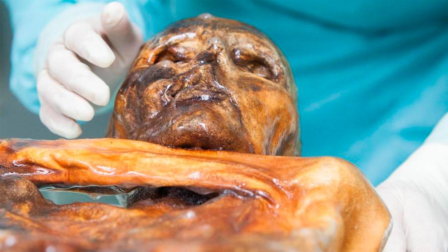 Ötzi, el hombre de hielo, murió acompañado de 75 especies de plantas