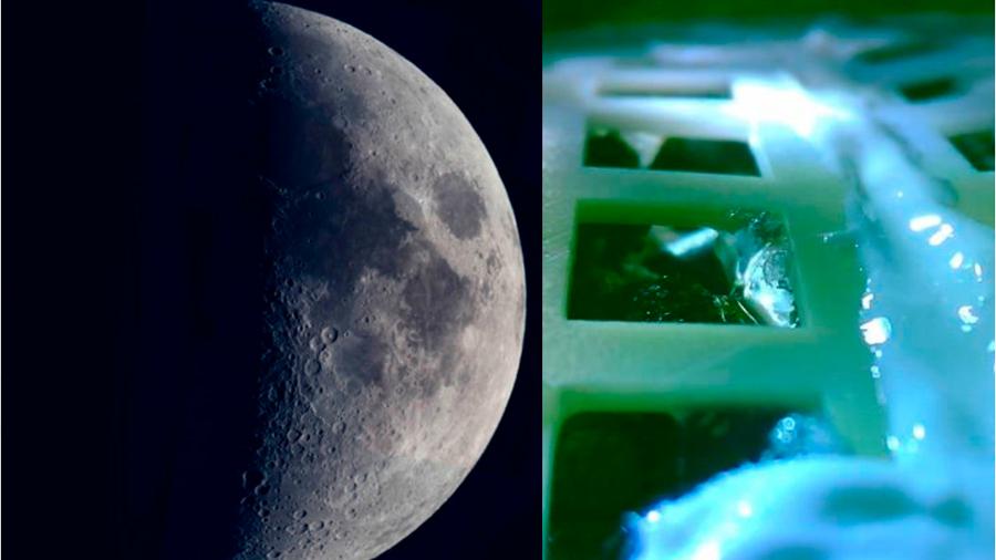 Descubren en China nuevo dato sobre la semilla que germino en la Luna