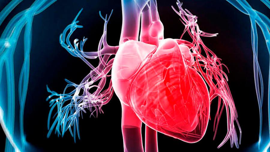 Desarrollan nuevos materiales para reparar el daño del corazón en un infarto