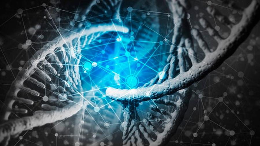 ADN antiguo para ayudar a las especies actuales
