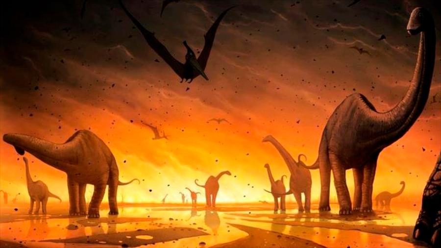 Acidificación del agua, causa de la última gran extinción hace 66 millones de años