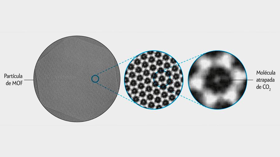 """Logran obtener imágenes de moléculas individuales de CO2 atrapadas en """"jaulas"""" moleculares"""