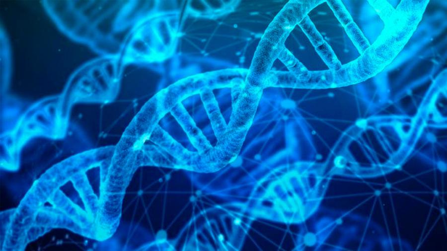 """Crean nueva herramienta de edición para """"reemplazar"""" genes sin romper el ADN"""