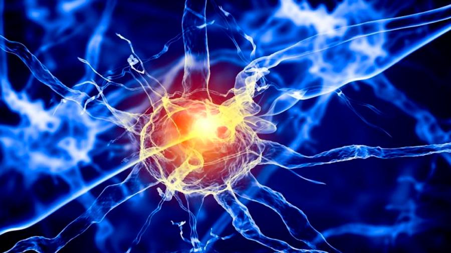 Descubren el primer fármaco eficaz para tratar el Alzhéimer