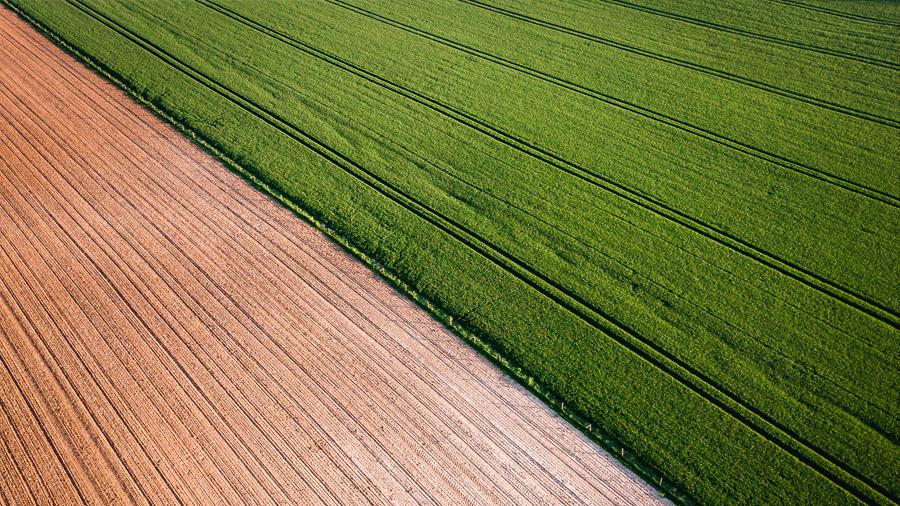 La agricultura y ganadería ecológicas son peores para el cambio climático