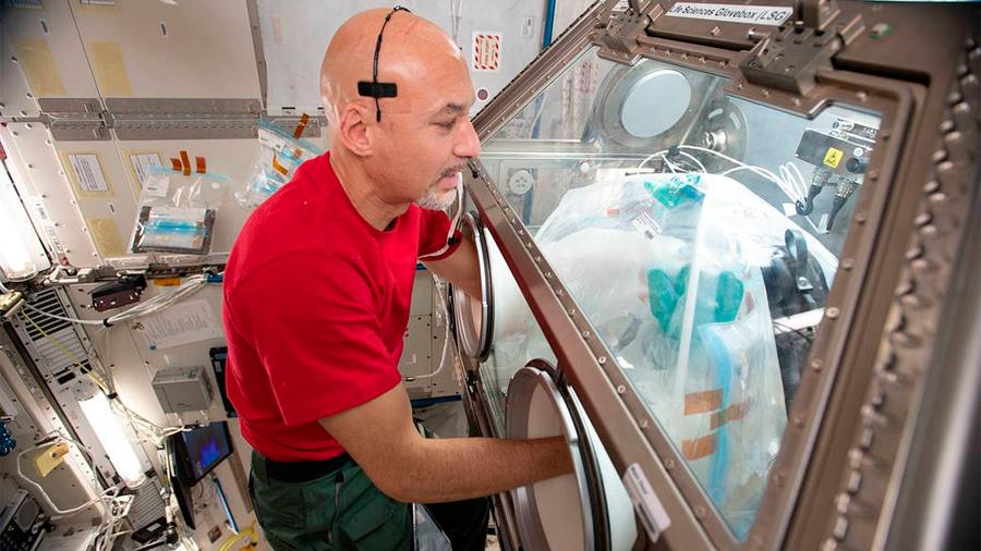 Consiguen producir carne en el espacio
