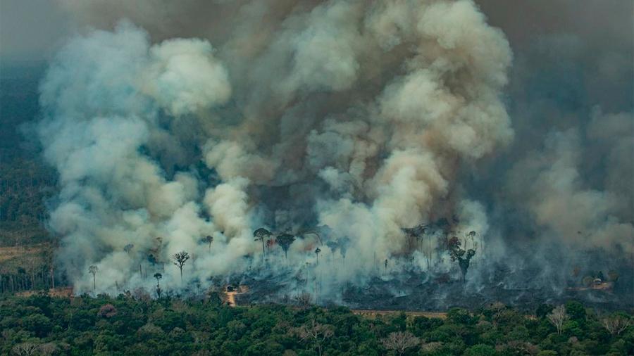 11 mil científicos de 153 países advierten a la Humanidad sobre el cambio climático