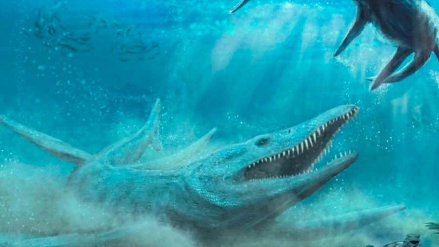 Hallan en Polonia los huesos de un enorme depredador marino que impacta a la ciencia