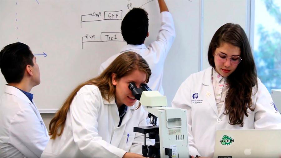 Premian a mexicanos que crearon biomarcador que mide la glucosa sin dolor
