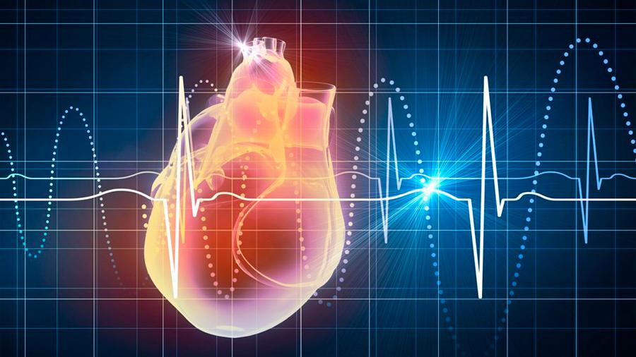Científicos descubren gen causante de la arritmia cardíaca