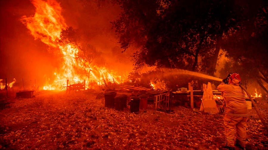 Crean innovador gel para prevenir incendios forestales