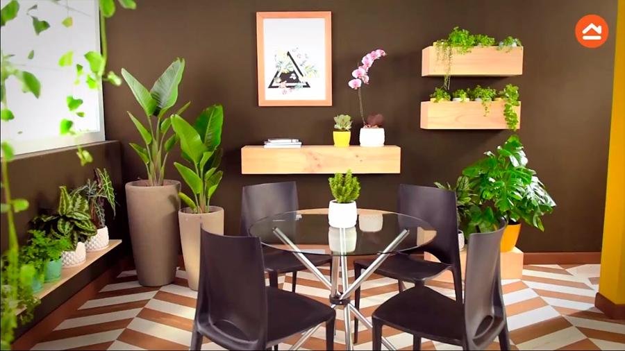 Las plantas que tienes en tu casa no ayudan a purificar el aire (lamentamos romper tu corazón)