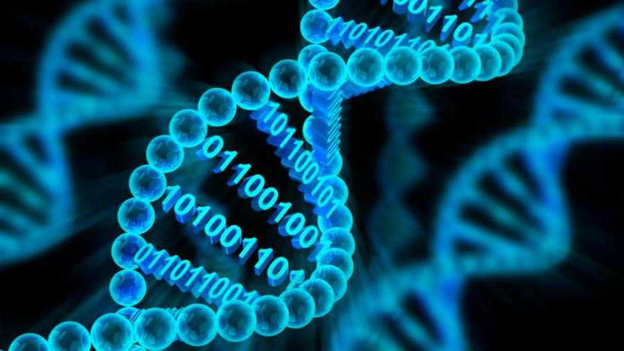 Descubren moléculas capaces de almacenar información genética además del ADN
