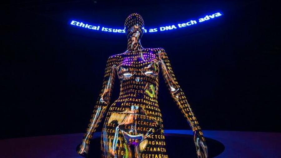 Empiezan a completar la historia pérdida de esclavos con ADN