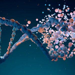 Las enfermedades que se esconden en nuestros genes