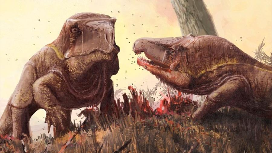 Un análogo del Dragón de Komodo lució la cabeza más desproporcionada