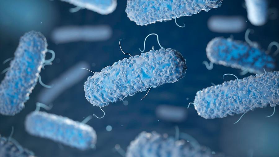 Científicos modifican bacteria para que se 'alimente' de CO2