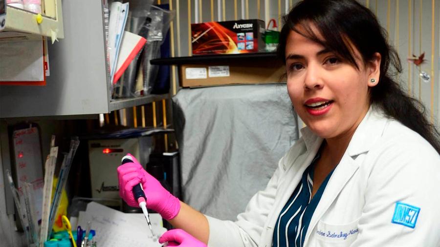 Mexicana halla cómo detectar daño renal sin hacer biopsia