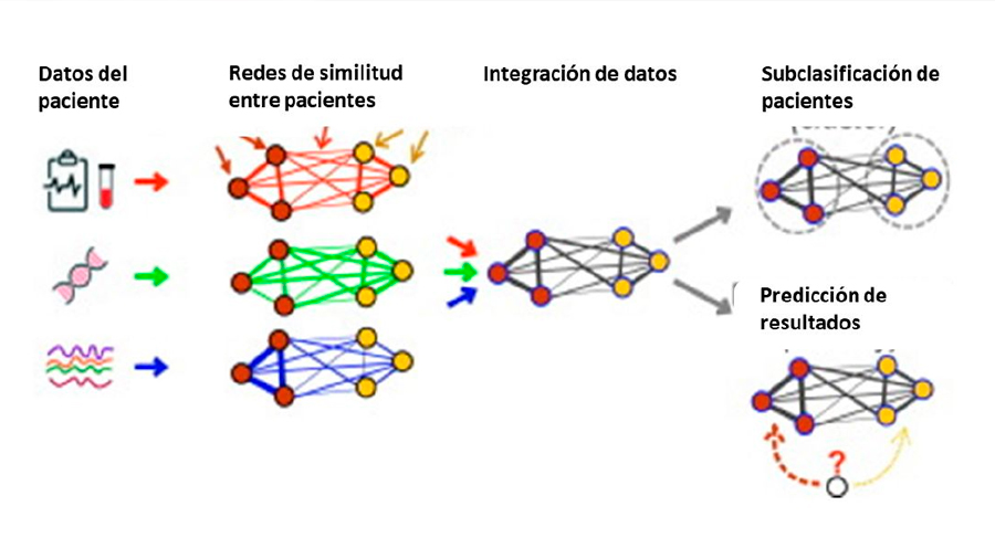 La ciencia de las redes y su conexión con lo que nos rodea