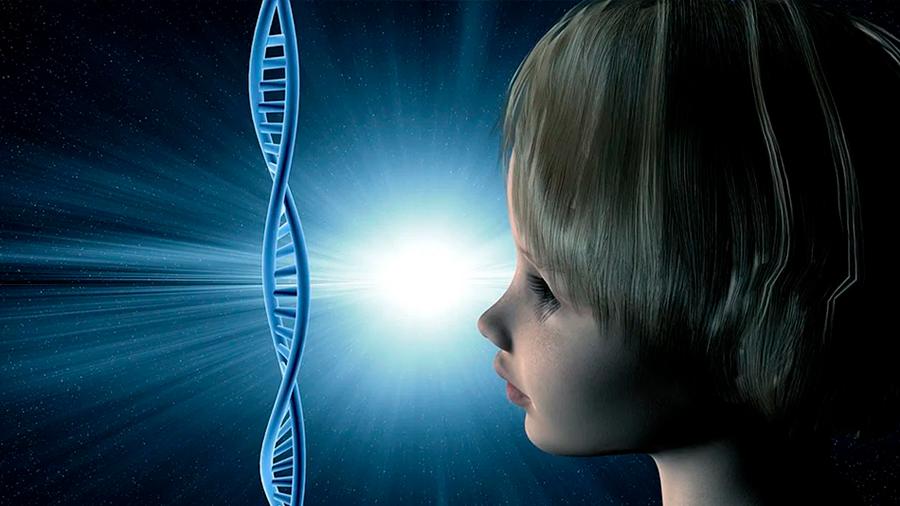 """Descubren el gen """"arquitecto"""" del rostro humano"""