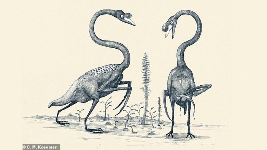 Así lucirían los animales si nos basamos solo en su estructura ósea