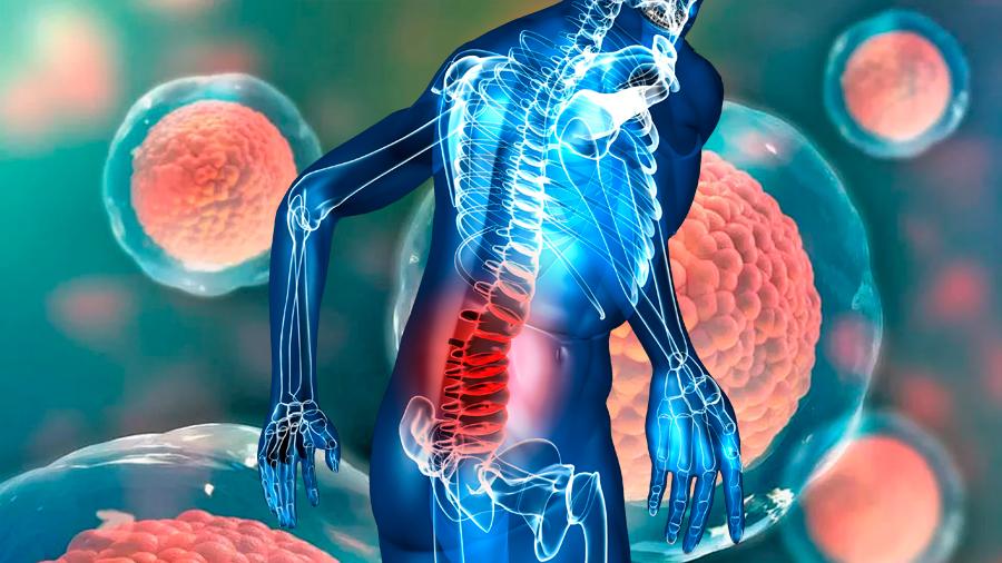 Japón autoriza ensayo con células madre pluripotentes para regenerar lesiones medulares