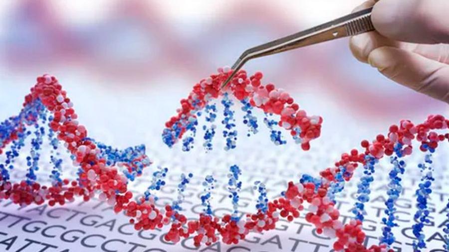 Aparecen nuevos detalles e inquietudes de las gemelas chinas editadas genéticamente
