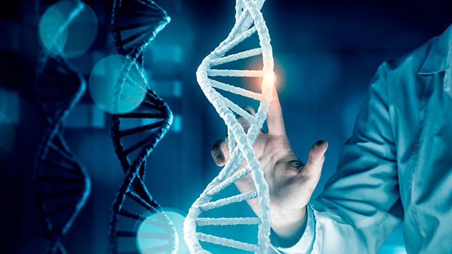 Descubren una nueva enfermedad inflamatoria: el síndrome CRIA