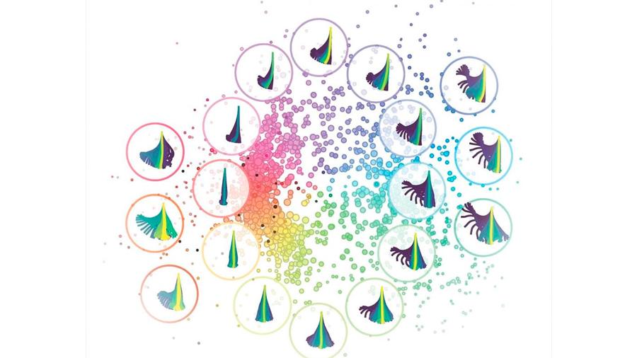 Descubren un receptor en el cuerpo que espía la comunicación entre las bacterias
