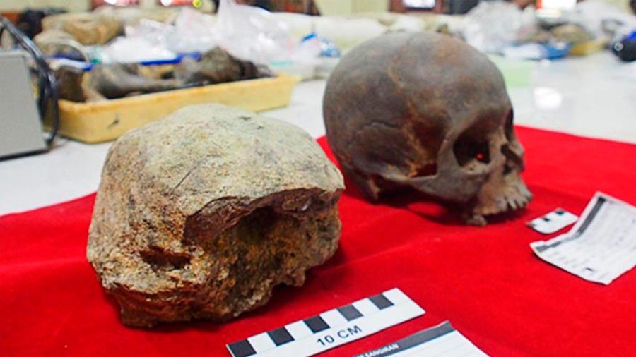 Descubren restos de los que fueron los últimos de los primeros humanos en caminar erguidos