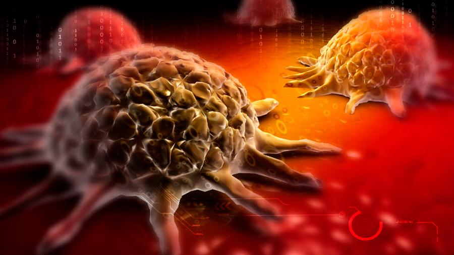 Nueva tecnología de entrega de moléculas terapéuticas inhibe el cáncer en ratones