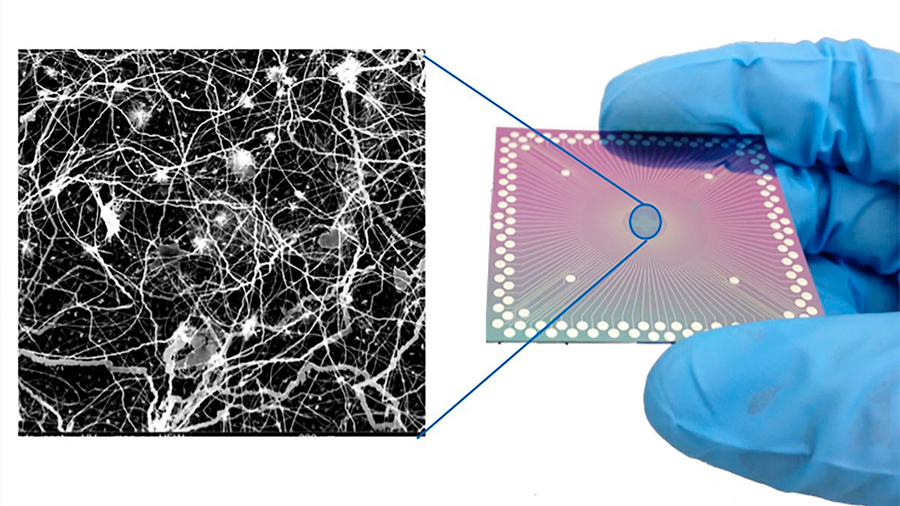 Una malla de nanocables exhibe actividad como la cerebral