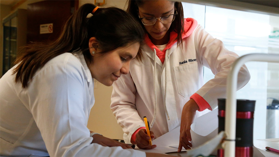 Estudiantes mexicanos crean hojas de papel hechas con conchas de mar