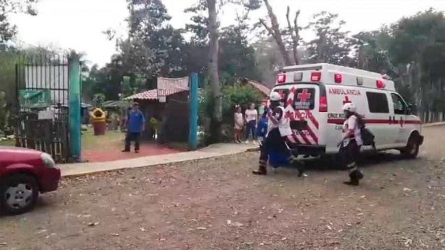 Jaguar ataca a una mujer en un zoológico mexicano