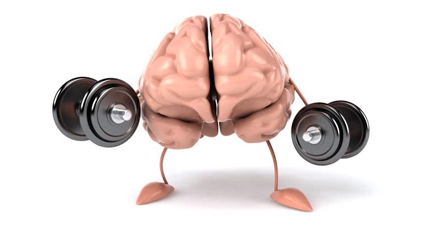 Los efectos del ejercicio en nuestro cerebro