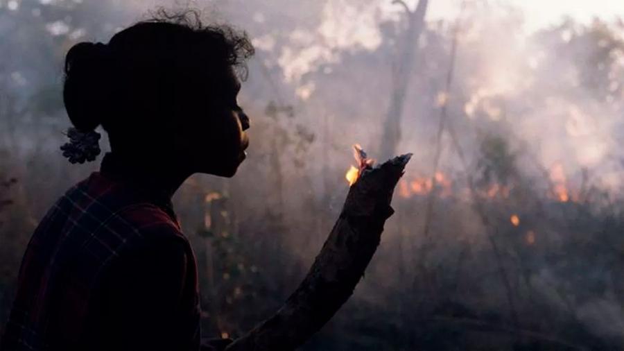 """""""Los arbustos deben arder"""": la milenaria técnica de los aborígenes para controlar el fuego en Australia"""