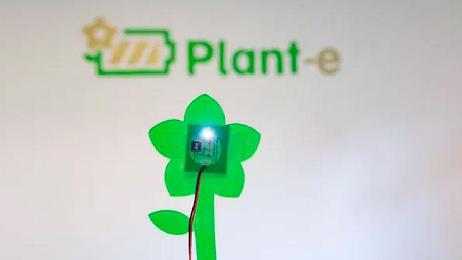 Un sensor transmite vía satélite con electricidad generada por plantas