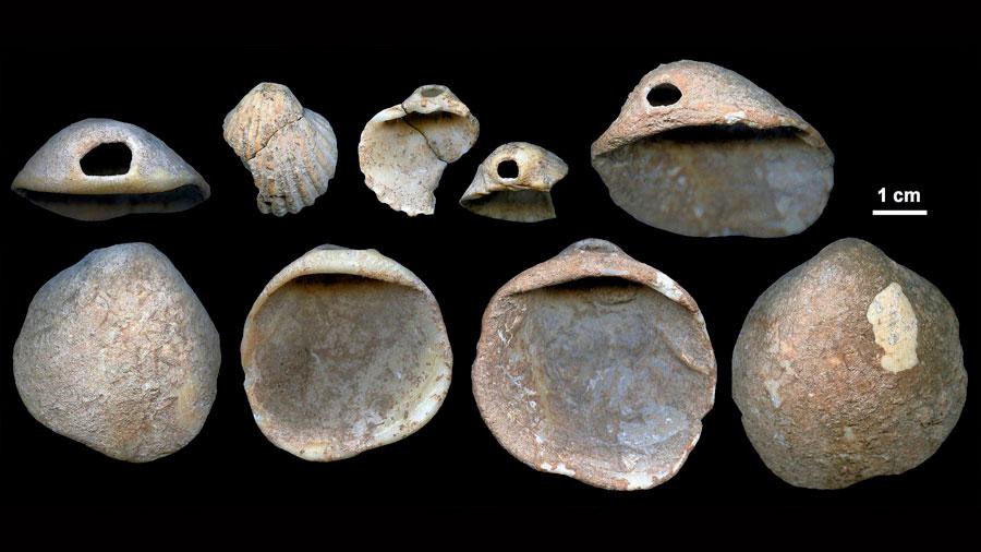 Revelan que neandertales buceaban para encontrar sus herramientas en el mar