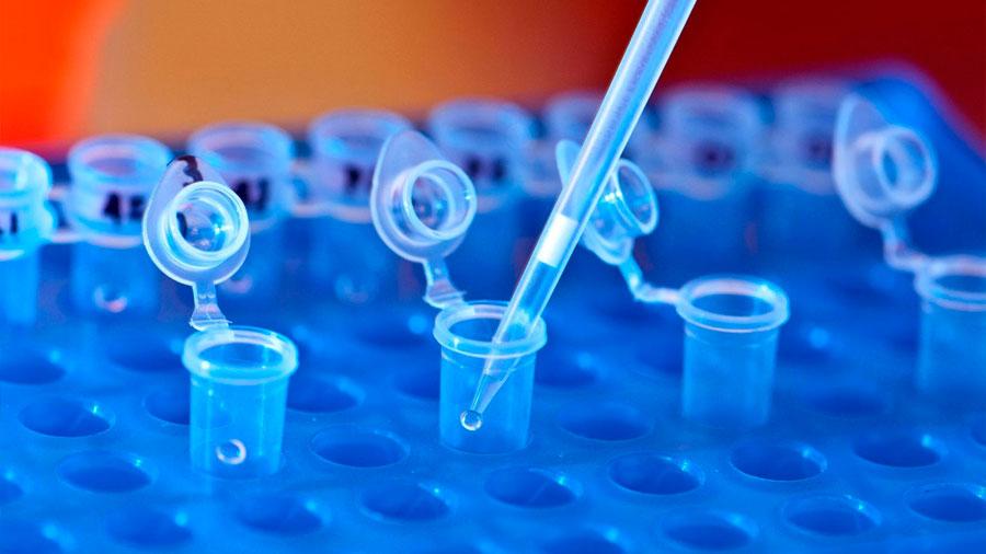 Descubren cómo activar una molécula que silencia al sistema inmune frente el cáncer