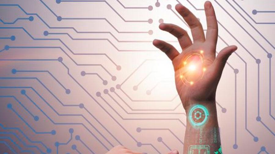 La piel humana: de la biología a la tecnología
